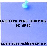 PRáCTICA PARA DIRECTOR DE ARTE