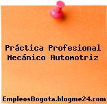 Práctica Profesional Mecánico Automotriz