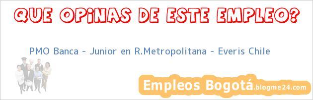 PMO Banca – Junior en R.Metropolitana – Everis Chile