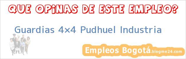 Guardias 4×4 Pudhuel Industria