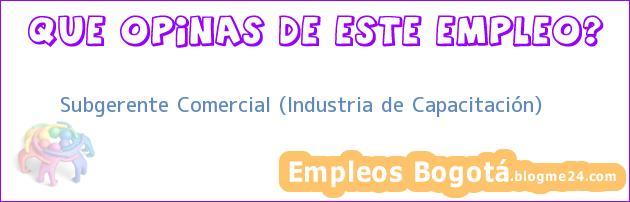 Subgerente Comercial (Industria de Capacitación)