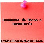 Inspector de Obras e Ingeniería