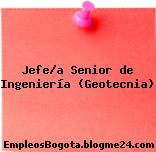 Jefe/a Senior de Ingeniería (Geotecnia)