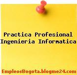 Práctica Profesional Ingeniería Informática