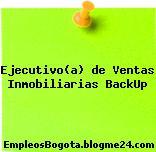Ejecutivo(a) de Ventas Inmobiliarias BackUp