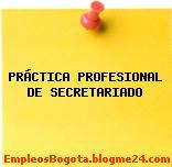 PRÁCTICA PROFESIONAL DE SECRETARIADO