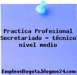 Practica Profesional Secretariado – técnico nivel medio