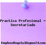 Practica Profesional Secretariado