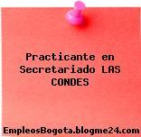 Practicante en Secretariado LAS CONDES