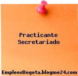 Practicante Secretariado