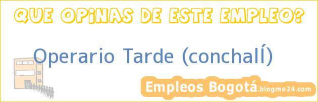 Operario Tarde (conchalÍ)