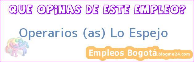 Operarios (as) Lo Espejo