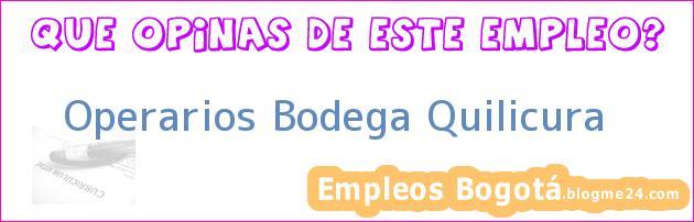 Operarios Bodega Quilicura
