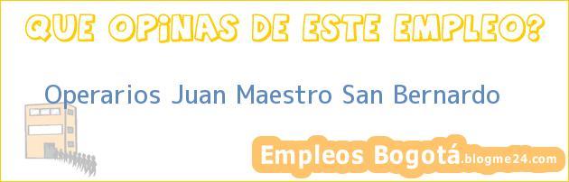 Operarios Juan Maestro San Bernardo