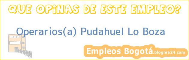 Operarios(a) Pudahuel Lo Boza