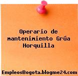 Operario de mantenimiento Grúa Horquilla
