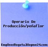 Operario De Producción/peñaflor