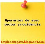 Operarios de aseo sector providencia