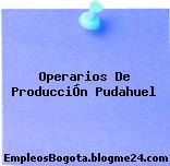 Operarios De ProducciÓn Pudahuel