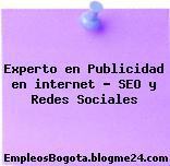 Experto en Publicidad en internet – SEO y Redes Sociales
