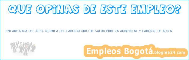 ENCARGADOA DEL AREA QUÍMICA DEL LABORATORIO DE SALUD PÚBLICA AMBIENTAL Y LABORAL DE ARICA
