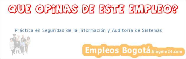 Práctica en Seguridad de la Información y Auditoría de Sistemas