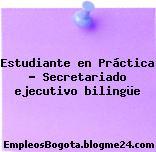 Estudiante en Práctica – Secretariado ejecutivo bilingüe