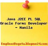 Java J2EE PL SQL Oracle Forms Developer – Manila