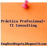 Práctica Profesional- Ti Consulting