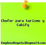 Chofer para turismo y Cabify