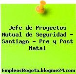 Jefe de Proyectos Mutual de Seguridad – Santiago – Pre y Post Natal