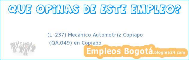 (L-237) Mecánico Automotriz Copiapo | (QA.049) en Copiapo