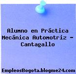 Alumno en Práctica Mecánica Automotriz – Cantagallo
