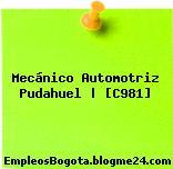 Mecánico Automotriz Pudahuel   [C981]