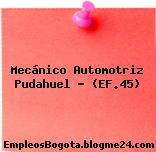 Mecánico Automotriz Pudahuel – (EF.45)