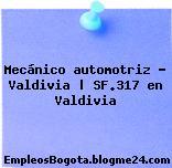 Mecánico automotriz – Valdivia | SF.317 en Valdivia