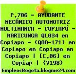 P.706 – AYUDANTE MECÁNICO AUTOMOTRIZ MULTIMARCA – COPIAPÓ – MARICUNGA QL034 en Copiapo – (QOO-171) en Copiapo en Copiapo en Copiapo | [C.06] en Copiap | (V198)
