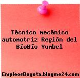Técnico mecánico automotriz Región del BíoBío Yumbel