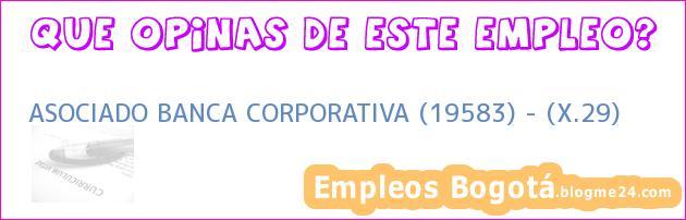 ASOCIADO BANCA CORPORATIVA (19583) – (X.29)