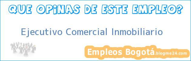 Ejecutivo Comercial Inmobiliario