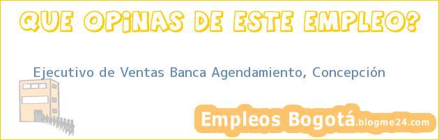 Ejecutivo de Ventas Banca Agendamiento, Concepción