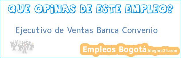 Ejecutivo de Ventas Banca Convenio