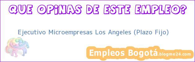 Ejecutivo Microempresas Los Angeles (Plazo Fijo)