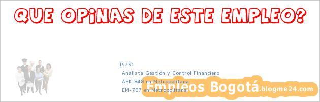 P.731   Analista Gestión y Control Financiero   AEK-848 en Metropolitana   EM-707 en Metropolitana