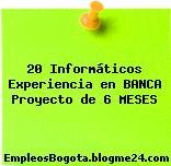 20 Informáticos Experiencia en BANCA Proyecto de 6 MESES