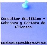 Consultor Analítico – Cobranza y Cartera de Clientes