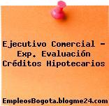 Ejecutivo Comercial – Exp. Evaluación Créditos Hipotecarios