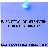 EJECUTIVO DE ATENCION Y VENTAS JUNIOR