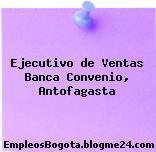 Ejecutivo de Ventas Banca Convenio, Antofagasta
