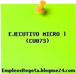 EJECUTIVO MICRO   (CU073)